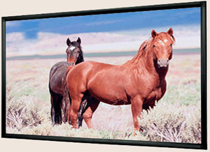 "Mustang SC-F82W169 82"" 16:9 Widescreen HDTV Fixed Frame Projection Screen"